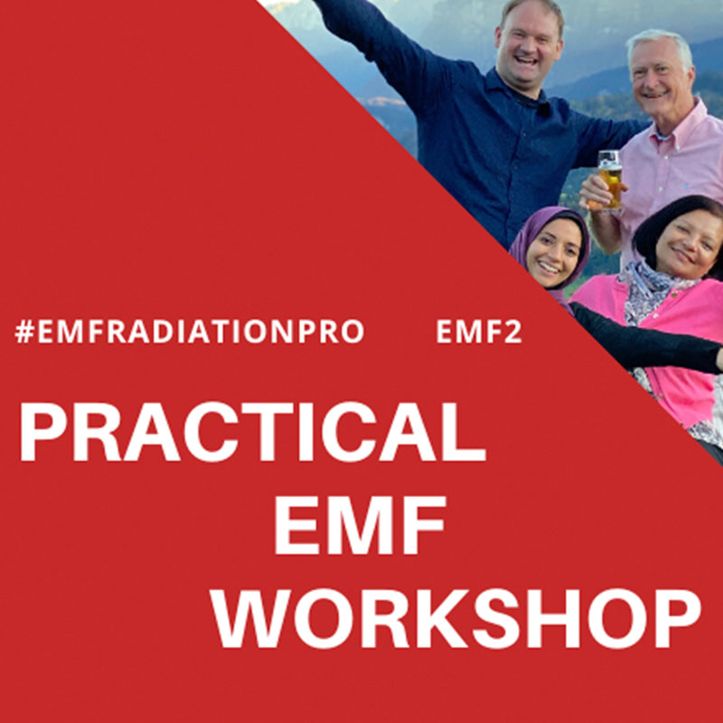 Practical EMF Radiation and Geopathic Stress Workshop