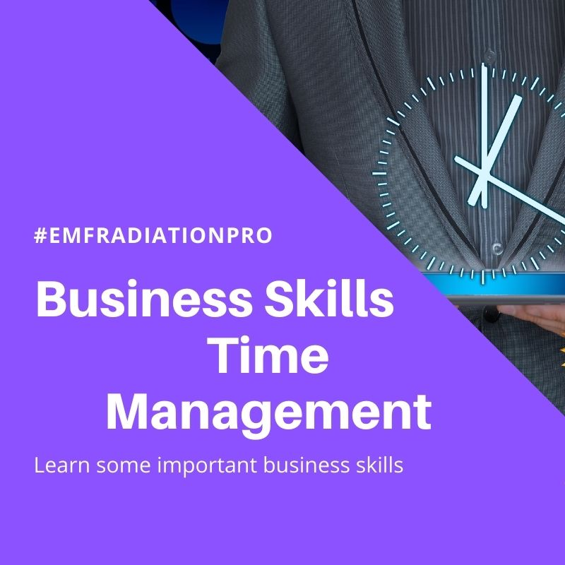 Time management training session for EMF consultants