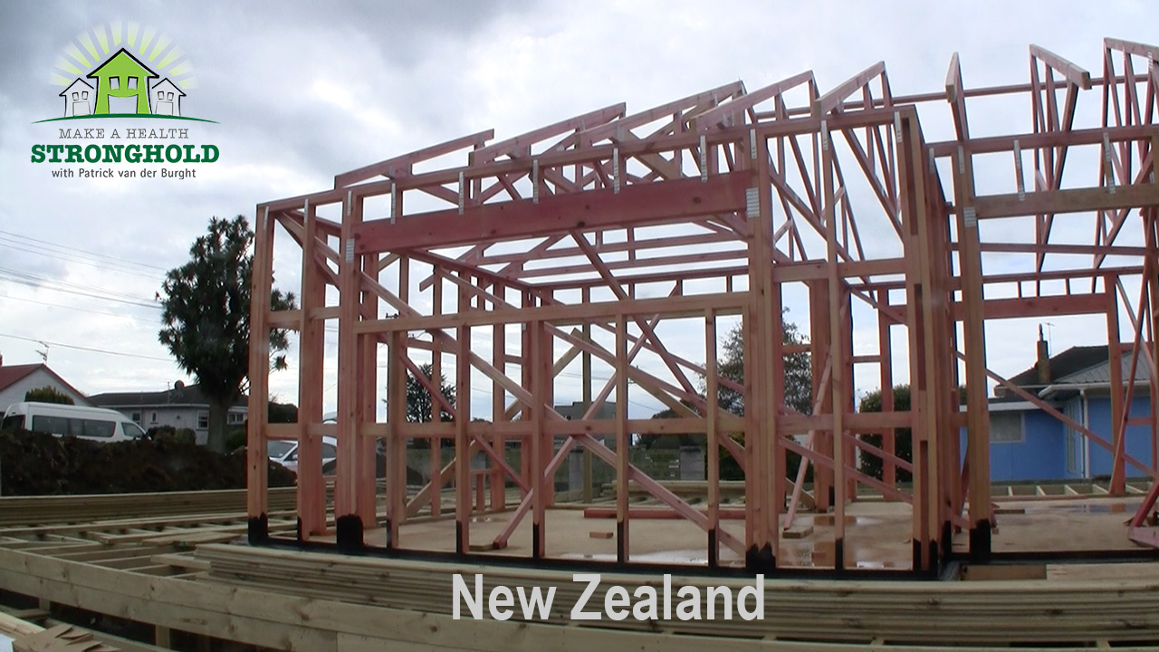 EMF Radiation-Free Building Consultant New Zealand Patrick van der Burght