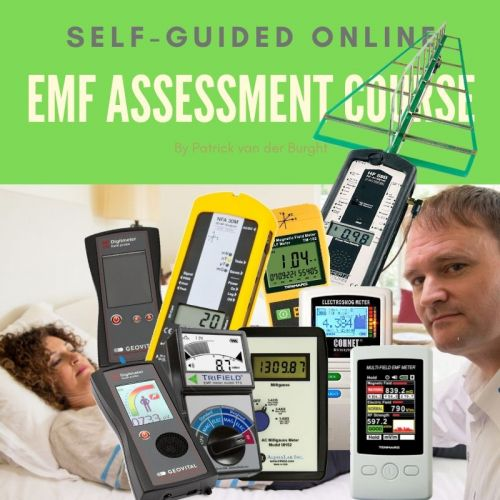Self-Guided Online EMF assessment course with EMF meters