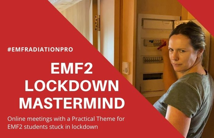 Patrick's EMF2 Practical Workshop EMF assessment - Lockdown Online Meetings